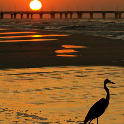 27. Gulf Shores, Alabama