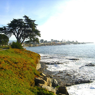 36. Santa Cruz, California