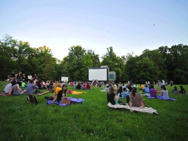 Screen on the green 2014.