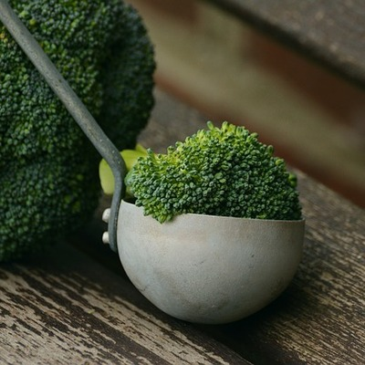 Brokula; izvor: https://pixabay.com/en/broccoli-vegetables-healthy-cook-1974801/