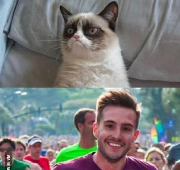 Grumpy cat vs Good guy
