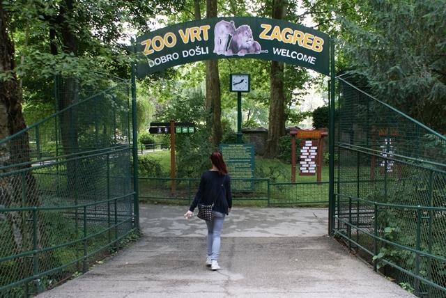 Zivotinje U Zooloskom Vrtu Grada Zagreba Od Danas Mozete Ponovno
