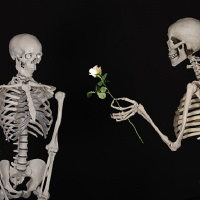 https://pixabay.com/en/skeletal-flower-congratulations-601213/