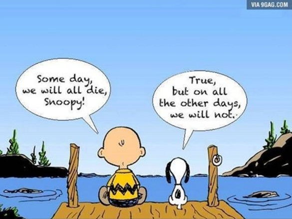 Charlie Brown i Snoopy - optimizam